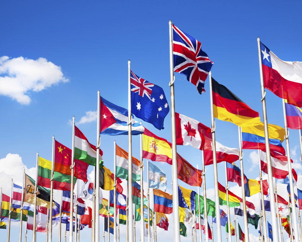 International Studieretning